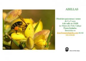 obradoiro sobre as abellas