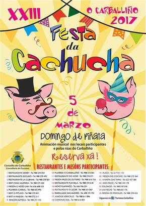 Entroido en Carballiño e Festa da Cachucha.